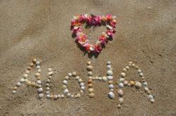 Lomi Lomi Aloha