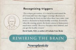 Rewiring the Brain With Neuroplasticity [Infographic]