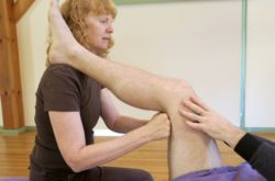 Clinical Massage Strategies: Functional Assessment and Treatment of the Pelvic Girdle