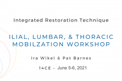 Ilial, Lumbar, and Thoracic Mobilization Workshop